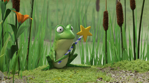 Frog and  wand